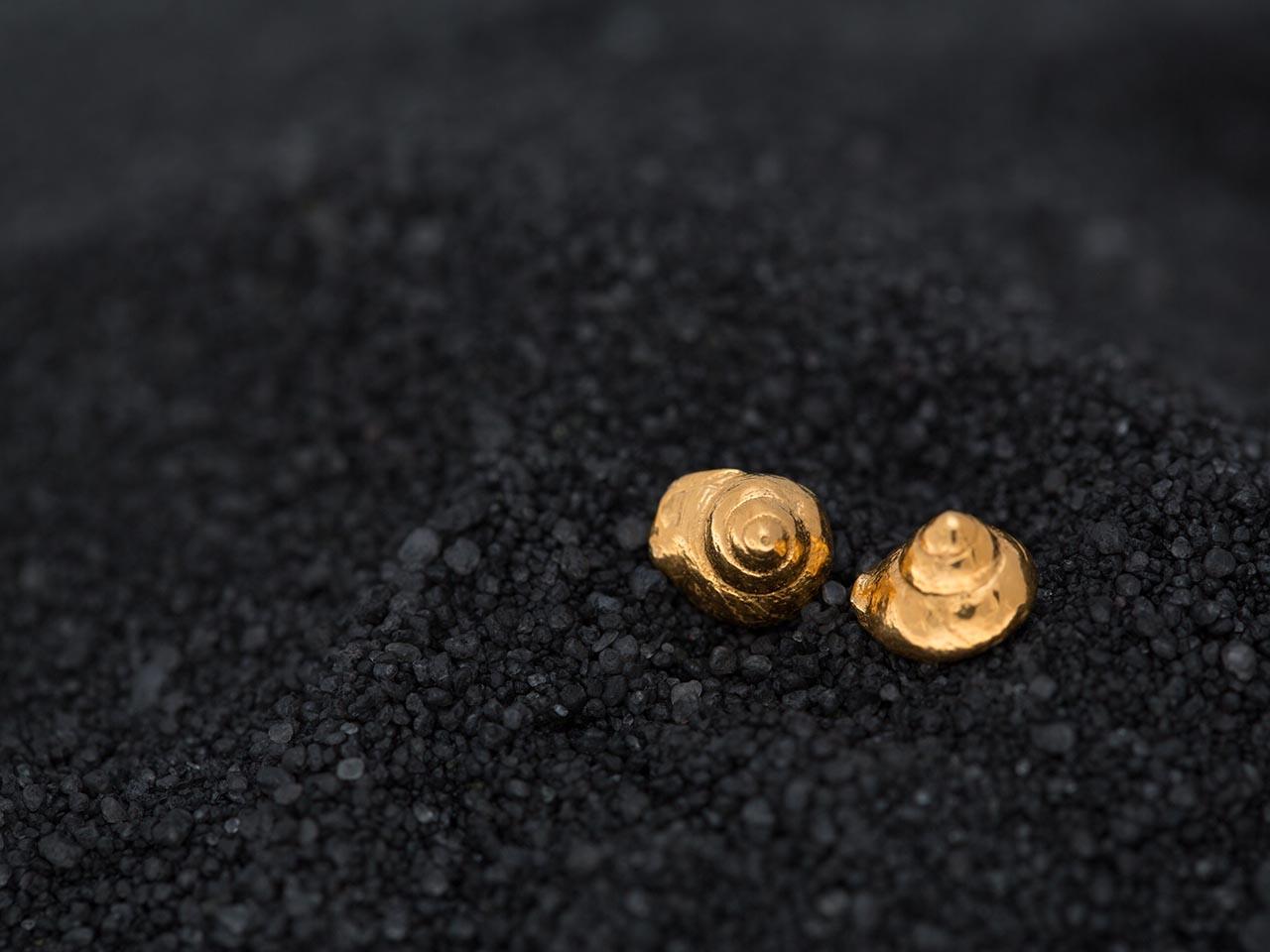 σκουλαρίκια καρφάκια κοχύλια χρυσά