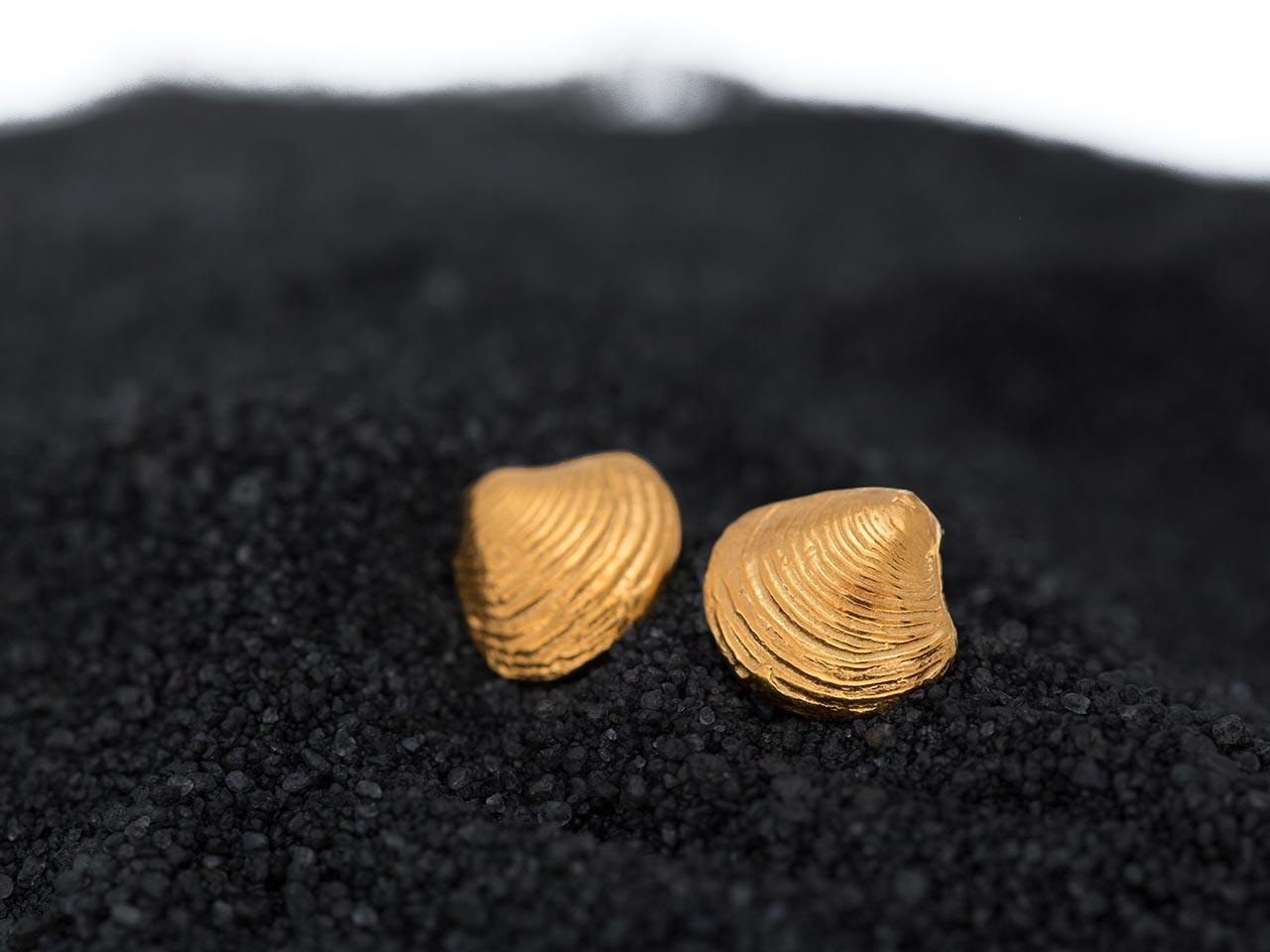 σκουλαρίκια καρφάκια αχιβάδες χρυσά