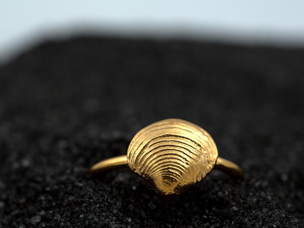 δαχτυλίδι κοχύλι αχιβάδα χρυσό